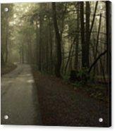 Shrouded Path Acrylic Print