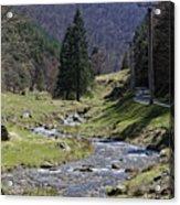 Shteaza river clear water near Rasinari Acrylic Print