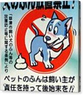 Shy Dog Acrylic Print