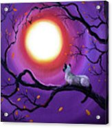 Siamese Cat In Purple Moonlight Acrylic Print