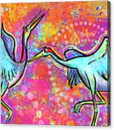 Siberian Cranes Acrylic Print