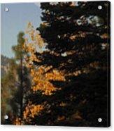 Sierra Autumn Moonset Acrylic Print