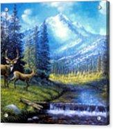Sierra Mountain Meadow   Acrylic Print