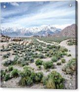 Sierra Nevada Front Acrylic Print