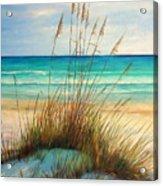 Siesta Key Beach Dunes  Acrylic Print
