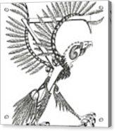 Sigma Eagle Acrylic Print