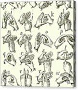 Sign Language Alphabet Acrylic Print