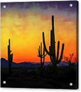 Sihouette Sunrise In The Sonoran Acrylic Print