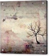 Silence To Chaos - 5502c2v Acrylic Print