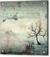 Silence To Chaos - 5502c3 Acrylic Print
