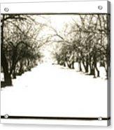 Silenced By The Snow Acrylic Print