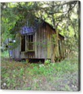 Silent By The Side Of The Road Acrylic Print by Terry  Wiley