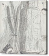 Silent Frog Acrylic Print