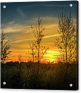 Silhouette By Sunset Acrylic Print