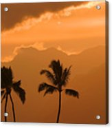 Silhouetted Palms Acrylic Print
