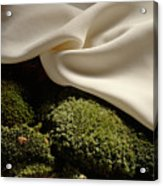 Silk And Moss Acrylic Print