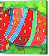 Silky Gecko Acrylic Print