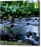 Silky Waters Acrylic Print