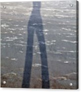 Silly Silhouette  Acrylic Print