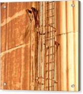 Silo Ladder Acrylic Print