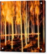 Silver Birches Flaming Abstract  Acrylic Print