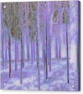 Silver Birch Magical Abstract  Acrylic Print