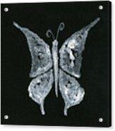 Silver Buterfly Acrylic Print