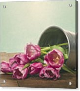 Silver Container With Fresh Tulips Acrylic Print
