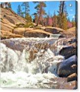 Silver Creek Rapid Acrylic Print