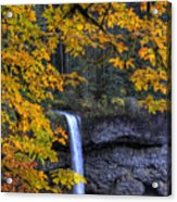 Silver Falls State Park Oregon Acrylic Print