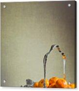 Silver Fruit Basket Acrylic Print