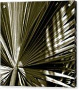 Silver Palm Acrylic Print
