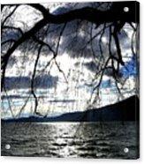 Silver Sunset Acrylic Print