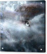Silver Wolf Acrylic Print