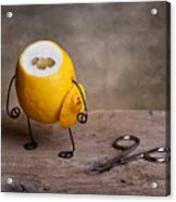 Simple Things 11 Acrylic Print by Nailia Schwarz