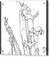 Simplistic Flower Sketch Acrylic Print