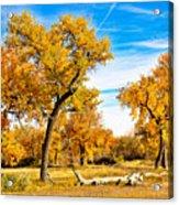 Simply Autumn Acrylic Print