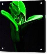 Simply Green Acrylic Print