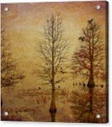 Simply Trees Acrylic Print