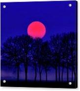 Simply Wonderful Acrylic Print