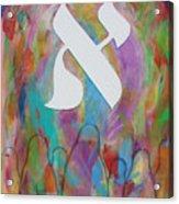 Sinai Acrylic Print