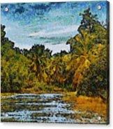Sinamaica Lake - Venezuela Acrylic Print