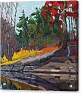 Singleton Autumn Acrylic Print