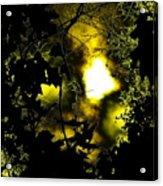 Sinister Acrylic Print