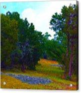 Sister's Hill Country Backyard Acrylic Print
