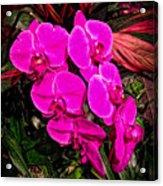 Six Flowers Acrylic Print