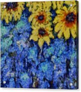 Six Sunflowers On Blue Acrylic Print
