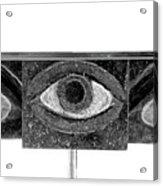 Sixth Chakra Ajna Third Eye Front Detail  Acrylic Print by Frank Pasquill