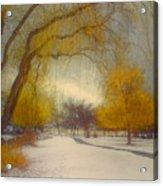 Skaha Path In Winter Acrylic Print