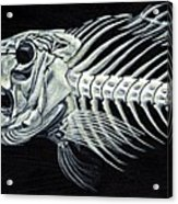 Skeletail Acrylic Print
